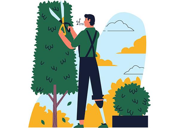 N'oubliez pas votre jardin-constructeur-de-maisons-individuelles-dordogne-périgord-périgord-maisons-bois-aménager-son-jardin-terrain-à-vendre